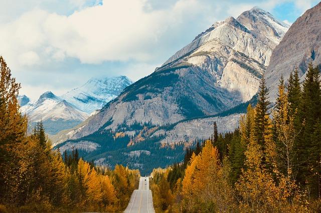 La strada Ice Field Parkway vicino al parco Banff in mezzo ai monti e agli alberti